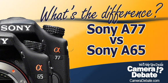 Sony A77 and A66 cameras