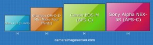 Sony NEX-5R sensor size comparison APS-C