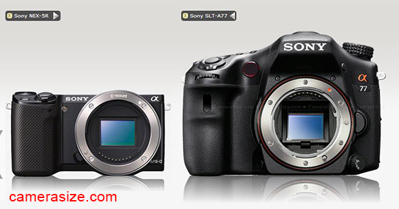 Sony NEx-5R vs Sony A77 size comparison