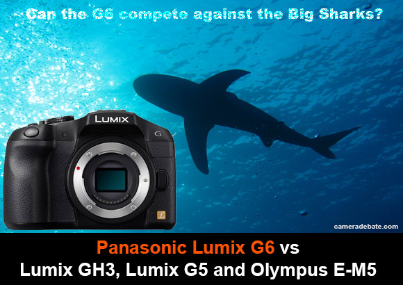 Panasonic Lumix G6 camea and shark swimming in the background