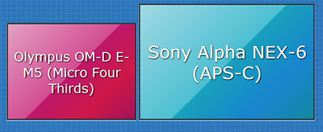 APS-C vs Micro Four Thirds sensor size comparison
