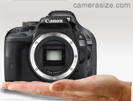 Canon EOS 100D / Rebel SL1 and Nikon D5200 on top of a human hand