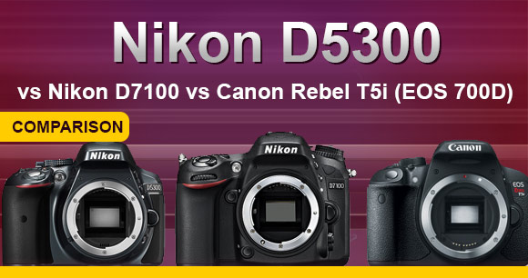 Nikon D5300, D7100 and Canon T5i side by side banner