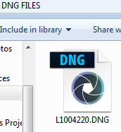 DNG file icon in Windows Explorer window